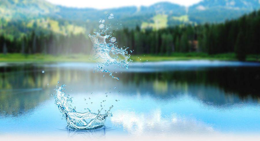 Функция воды в нашем организме