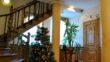Отель Ориана - hotel oriana mytru 01 110x62