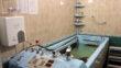 Вилла Жасмин - villa zhasmin lecheniye mytru 05 110x62